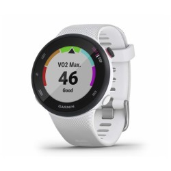 Смарт -часы Garmin Forerunner 45s White (010-02156)
